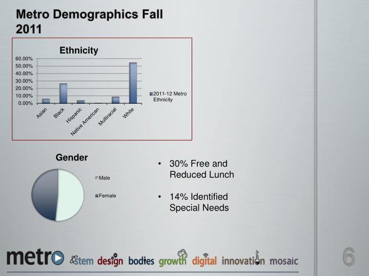 Metro Demographics Fall 2011