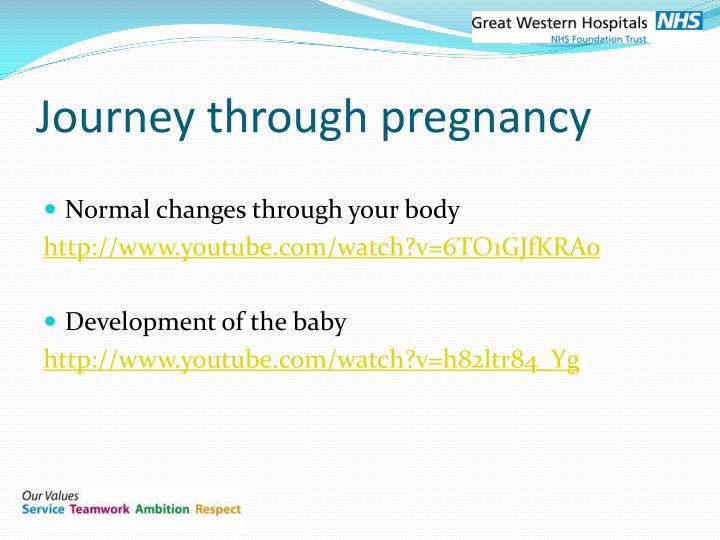 Journey through pregnancy