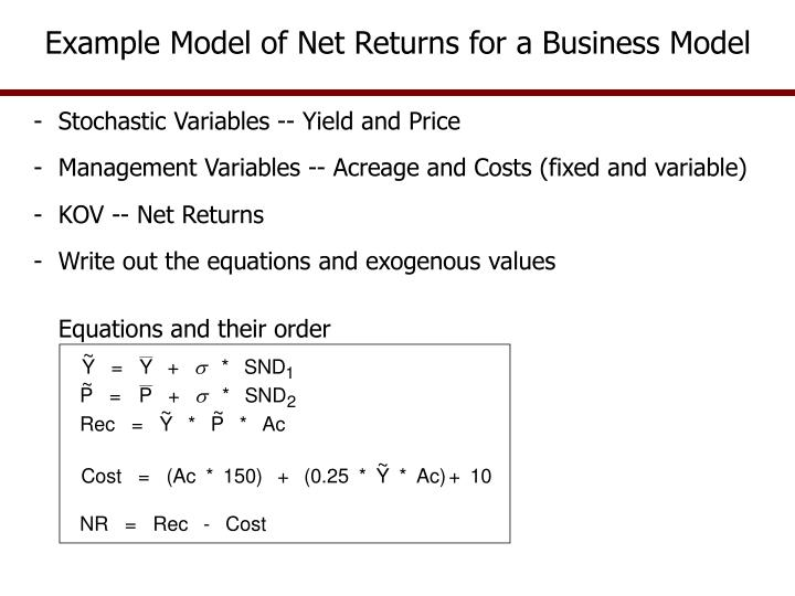 Example Model of Net Returns for a Business Model