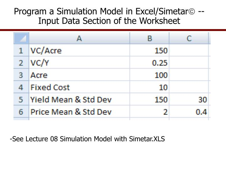 Program a Simulation Model in Excel/Simetar