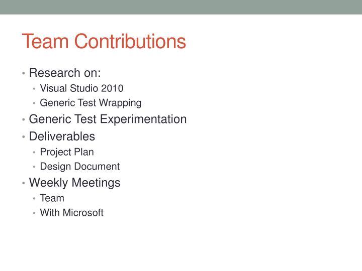 Team Contributions