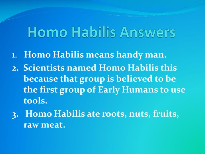 Homo Habilis Answers