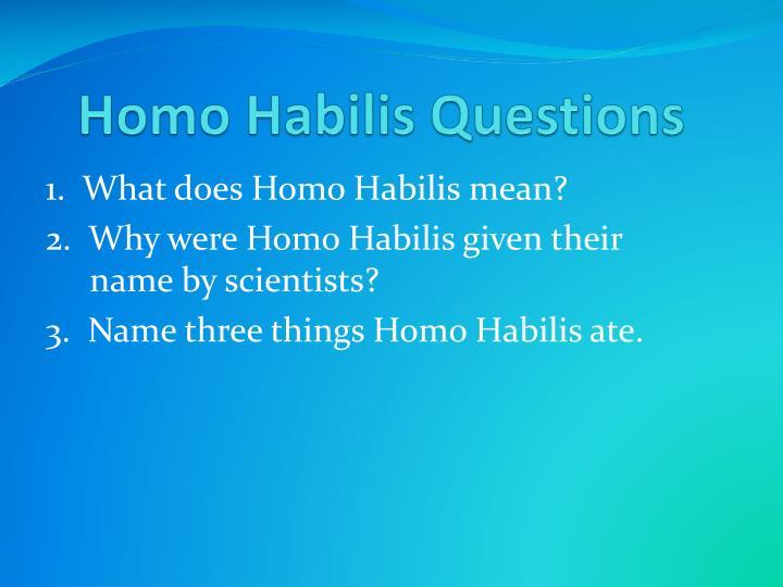 Homo Habilis Questions