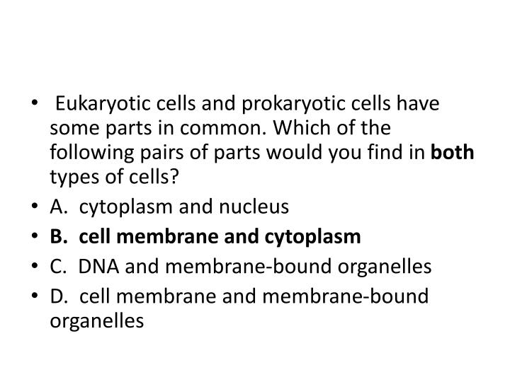 Eukaryotic cells and prokaryotic cells have some parts in common. Which of the following pairs of parts would you find in