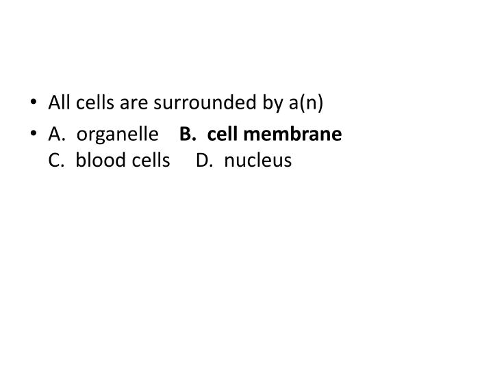 All cells are surrounded by a(n)
