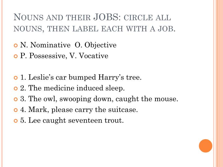 Nouns and their JOBS: circle all nouns, then label each with a job.