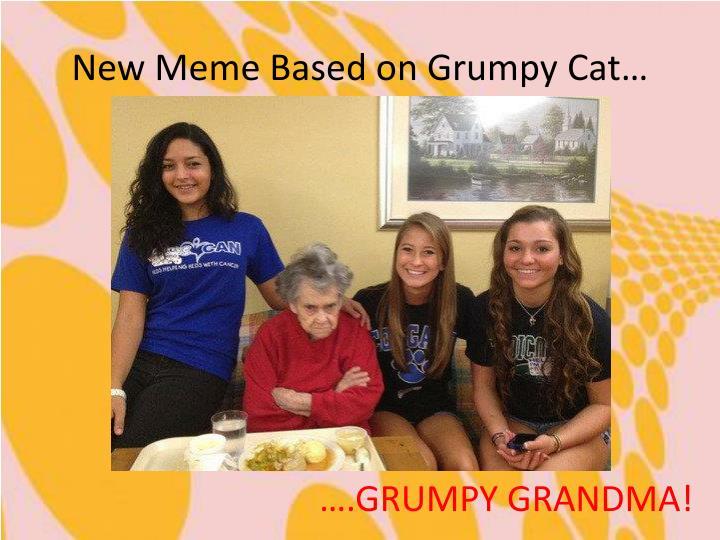 New Meme Based on Grumpy Cat…