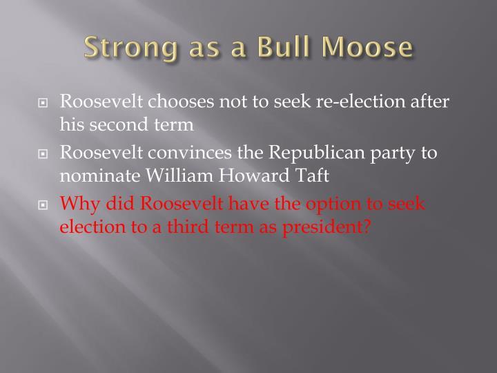 Strong as a Bull Moose