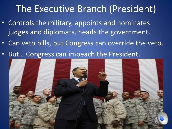 The executive branch president
