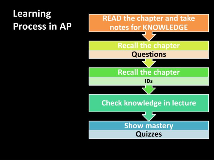 Learning Process in AP
