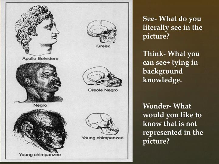 See- What do you literally see in the picture?