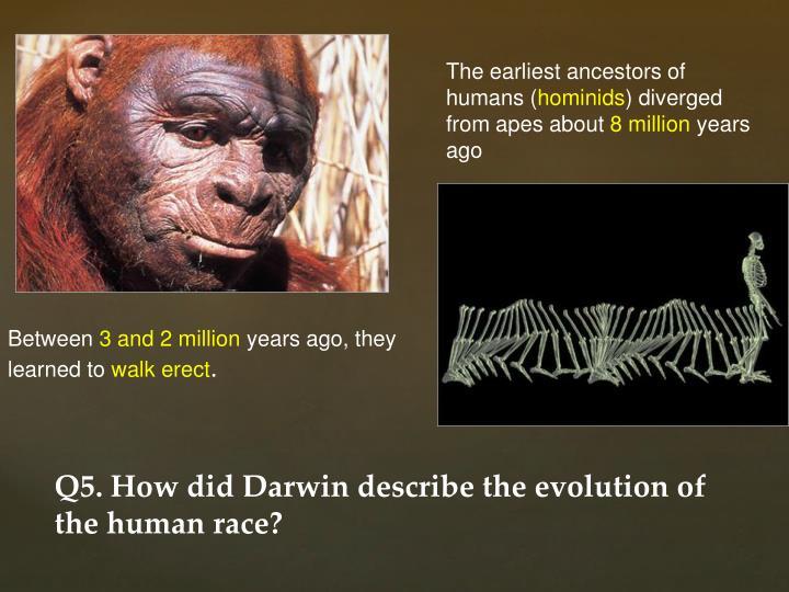 The earliest ancestors of humans (