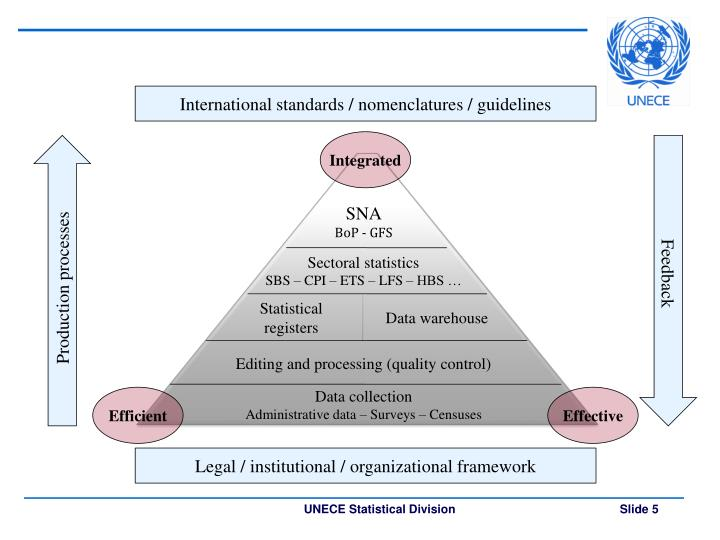 International standards / nomenclatures / guidelines