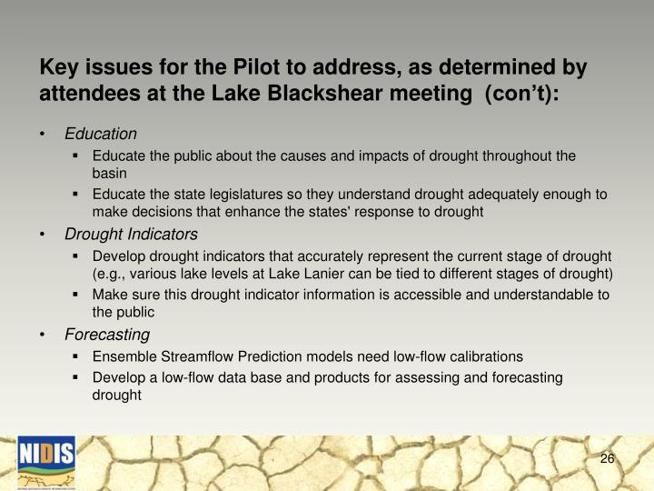 Key issues for the Pilot to address, as determined by attendees at the Lake Blackshear meeting  (