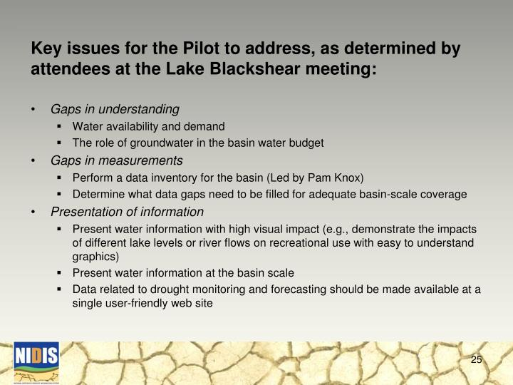 Key issues for the Pilot to address, as determined by attendees at the Lake Blackshear meeting: