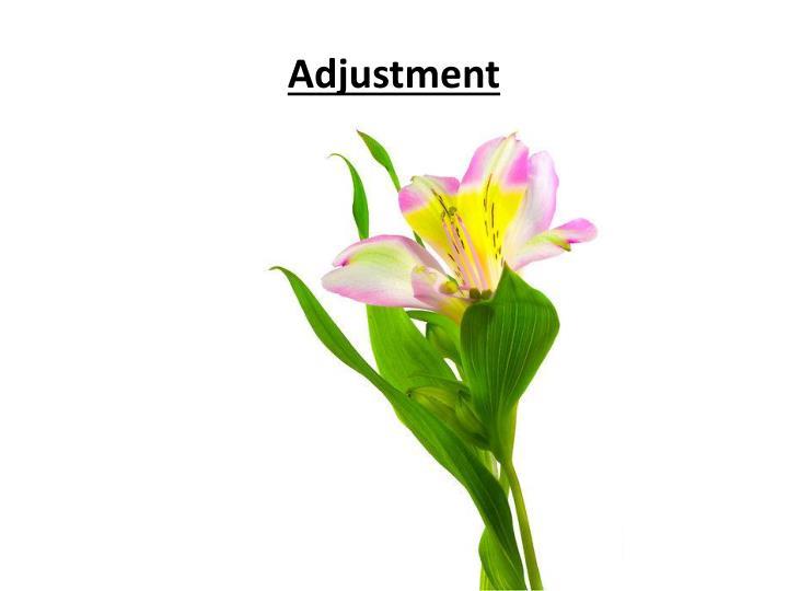 Adjustment