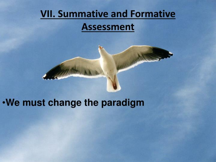 VII. Summative and Formative Assessment