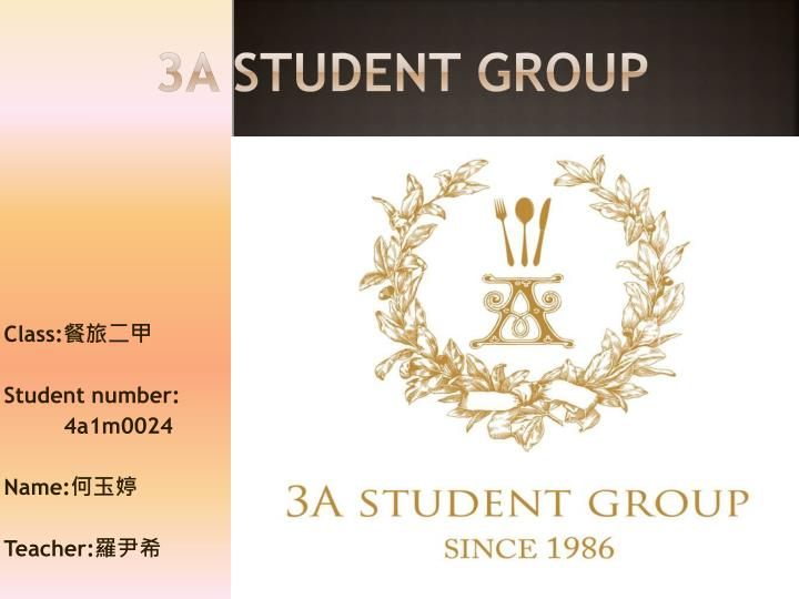 3A STUDENT GROUP