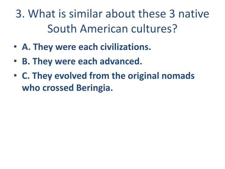 3. What is similar about these 3 native South American cultures?