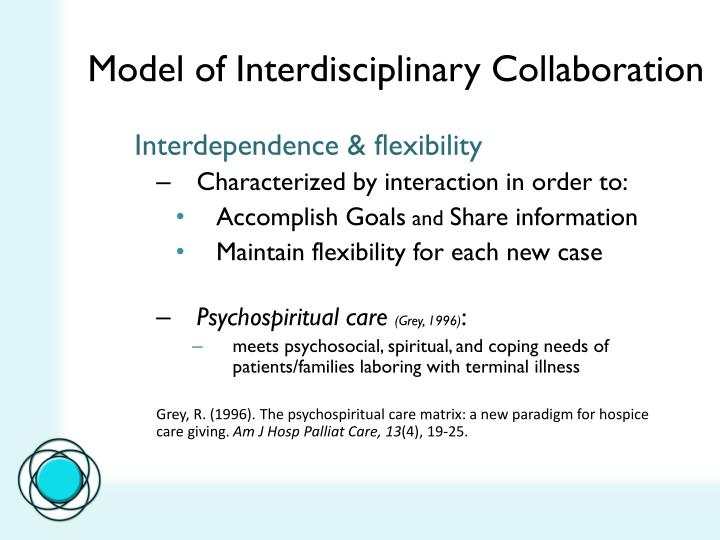 Model of Interdisciplinary Collaboration