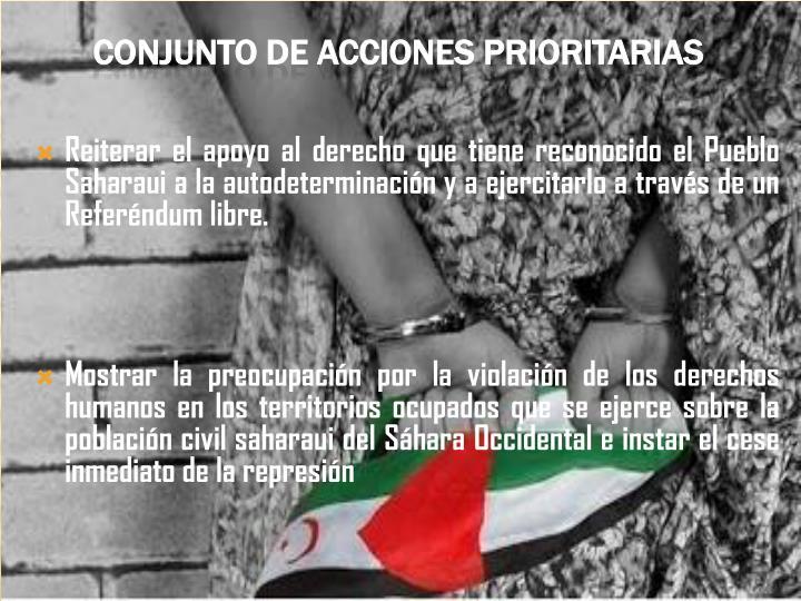 Reiterar el apoyo al derecho que tiene reconocido el Pueblo Saharaui a la autodeterminación y a ejercitarlo a través de un Referéndum libre.