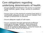 core obligations regarding underlying determinants of health
