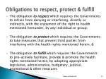 obligations to respect protect fulfill