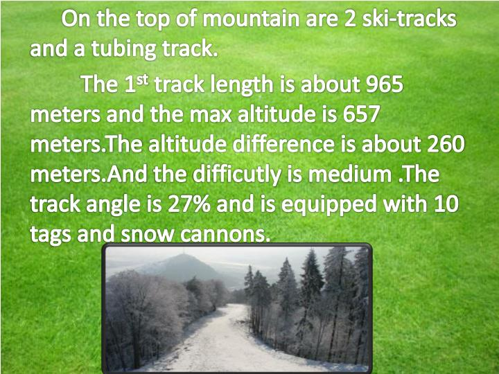 On the top of mountain are 2 ski-tracks and a tubing track.