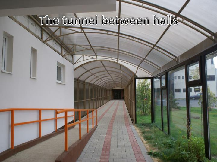 The tunnel between halls