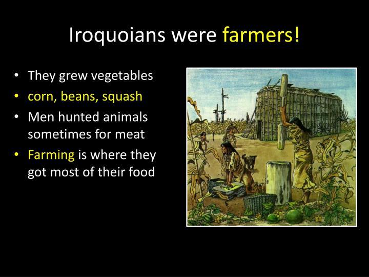Iroquoians were