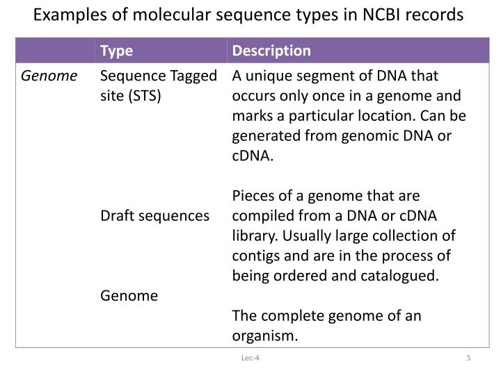 Examples of molecular sequence types in NCBI records