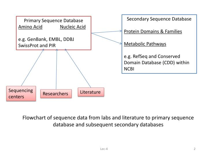 Flowchart of sequence data from labs and literature to primary sequence database and subsequent secondary databases
