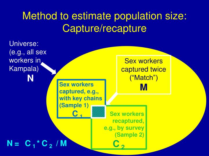 Method to estimate population size: Capture/recapture