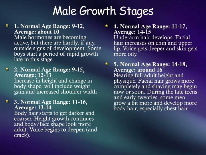 Male Growth Stages