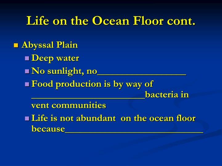 Life on the Ocean Floor cont.