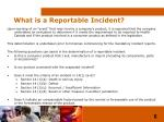 what is a reportable incident