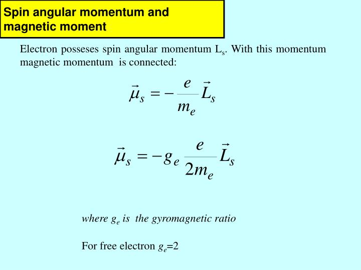 Spin angular momentum and magnetic moment