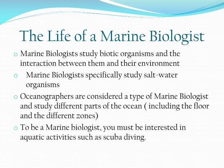 The Life of a Marine Biologist