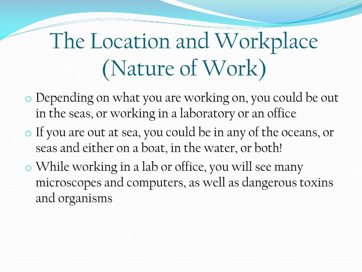 The Location and Workplace