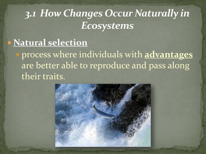 3 1 how changes occur naturally in ecosystems1