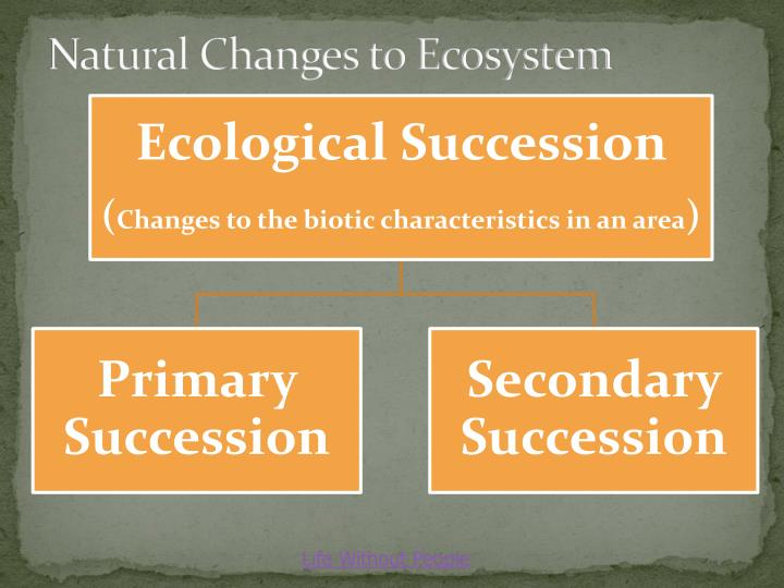 Natural Changes to Ecosystem