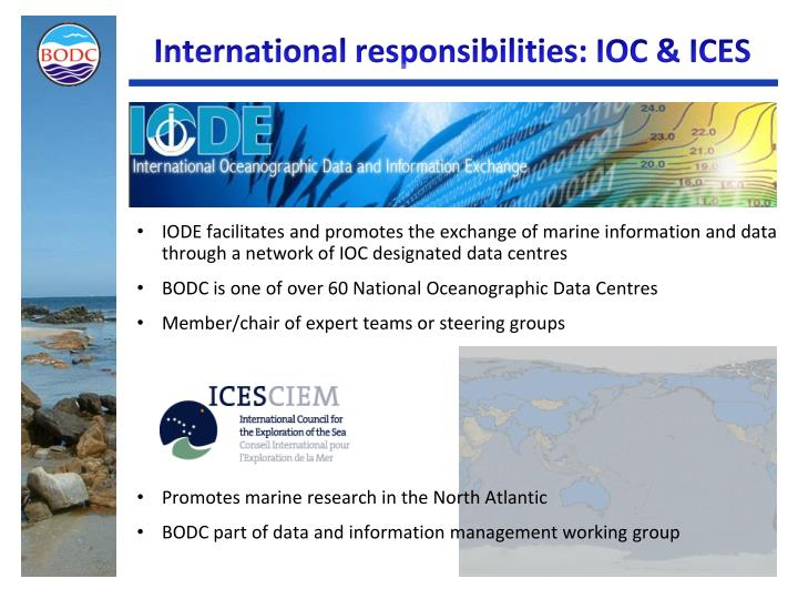 International responsibilities: IOC & ICES