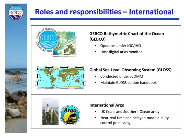 Roles and responsibilities – International