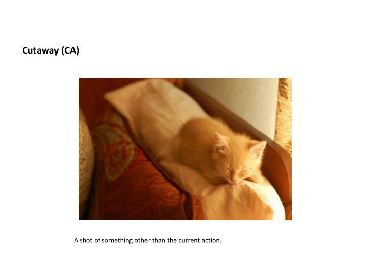 Cutaway (CA)