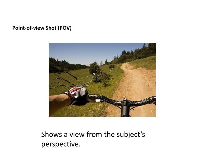 Point-of-view Shot (POV)