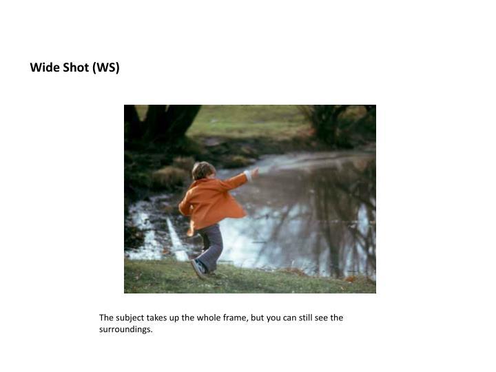 Wide Shot (WS)