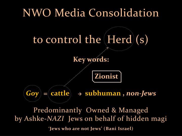 NWO Media Consolidation