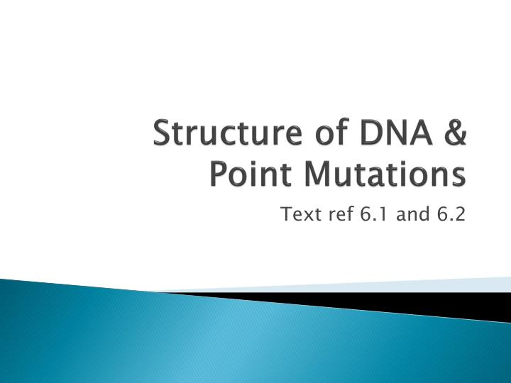 Structure of DNA &    Point Mutations