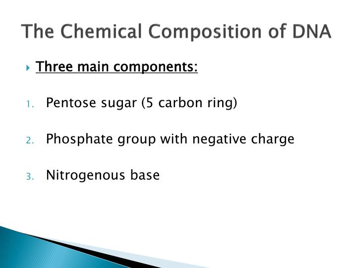 The chemical composition of dna
