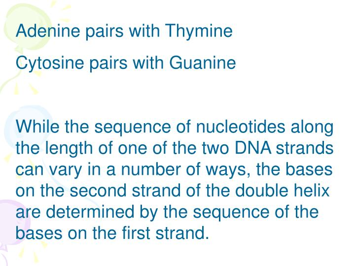 Adenine pairs with Thymine